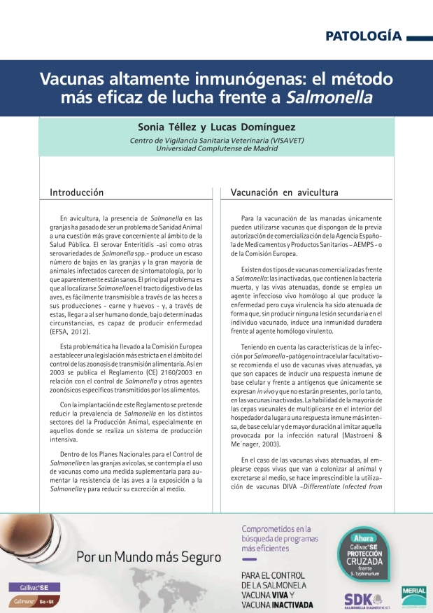 Vacunas altamente inmunógenas: el método más eficaz de lucha frente a Salmonella