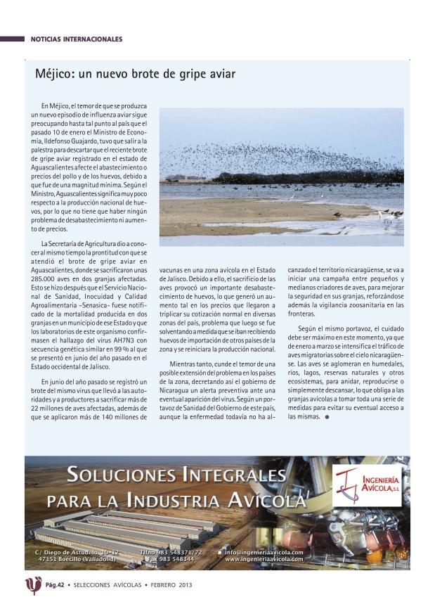 Méjico: un nuevo brote de gripe aviar