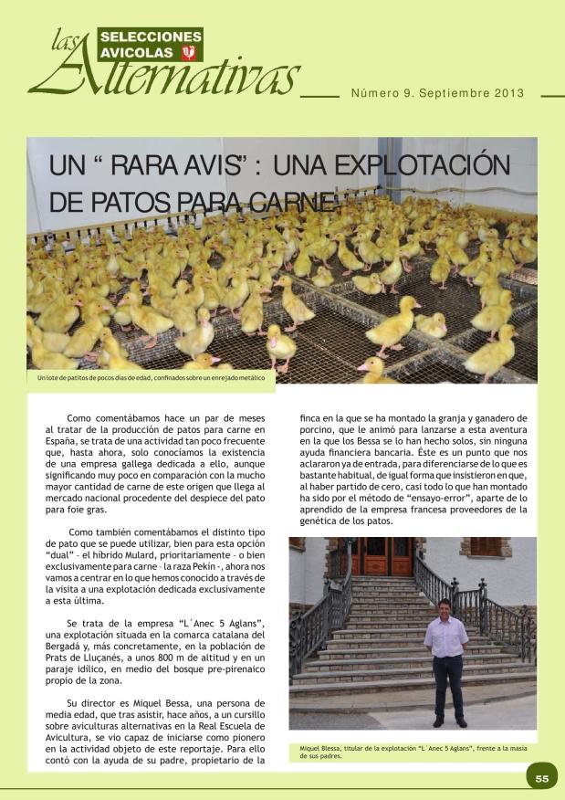 """Una """"rara avis"""": una explotación de patos para carne"""