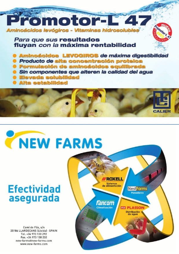 New Farms