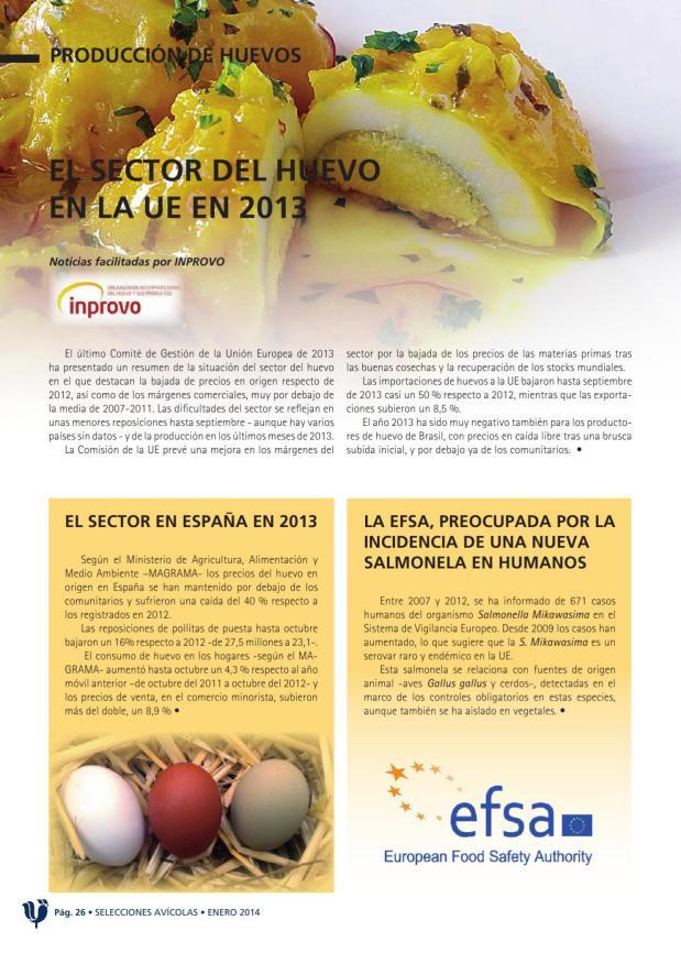 El sector del huevo en la UE en 2013