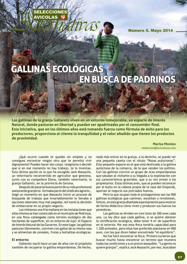 Gallinas ecológicas en busca de padrinos