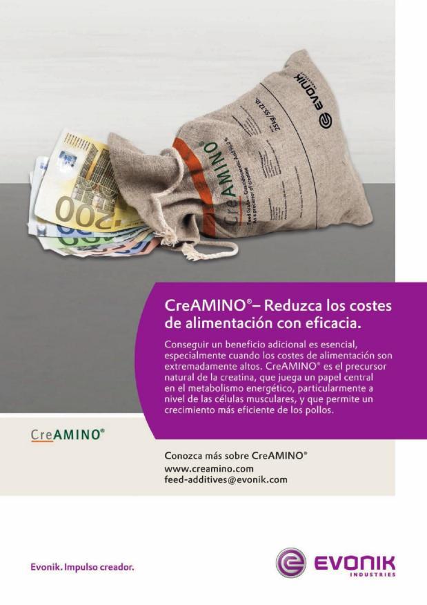 CreAMINO