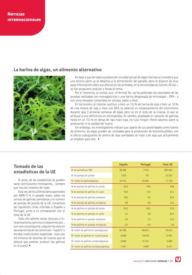La harina de algas, un alimento alternativo