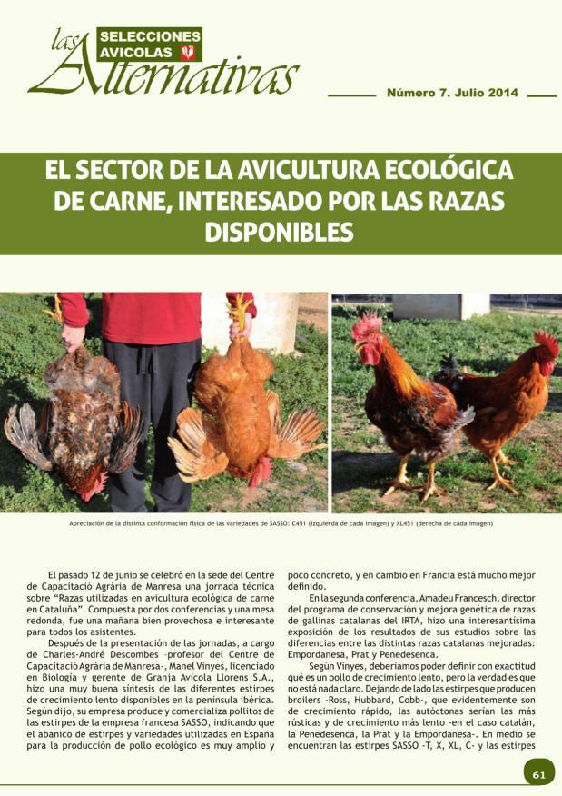 El sector de la avicultura ecológica de carne, interesado por las razas disponibles