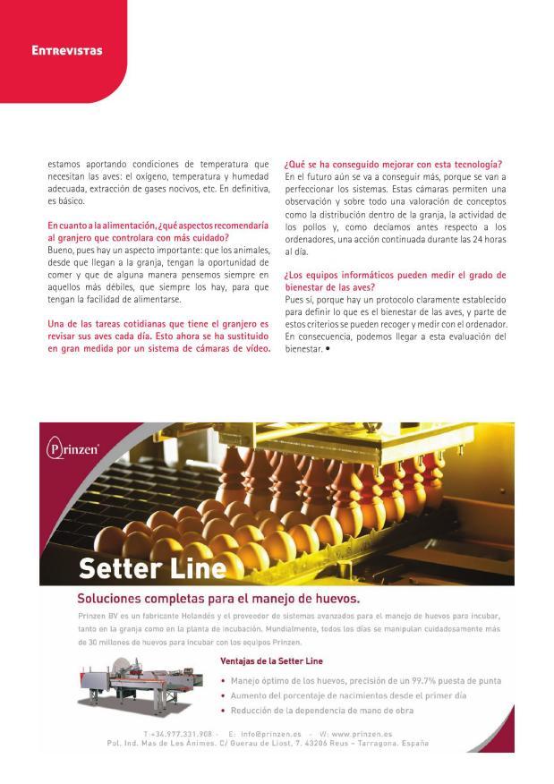 Setter Line
