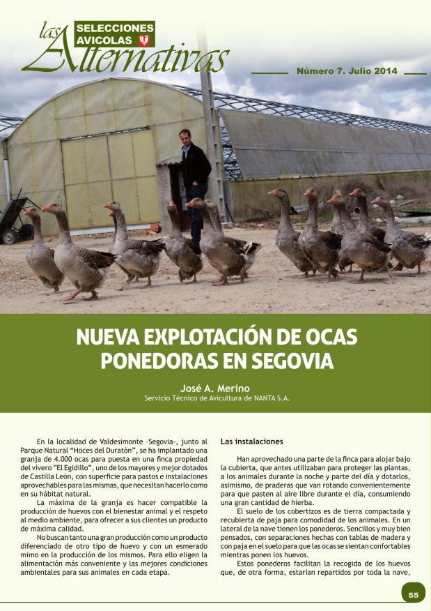 Nueva explotación de ocas ponedoras en Segovia