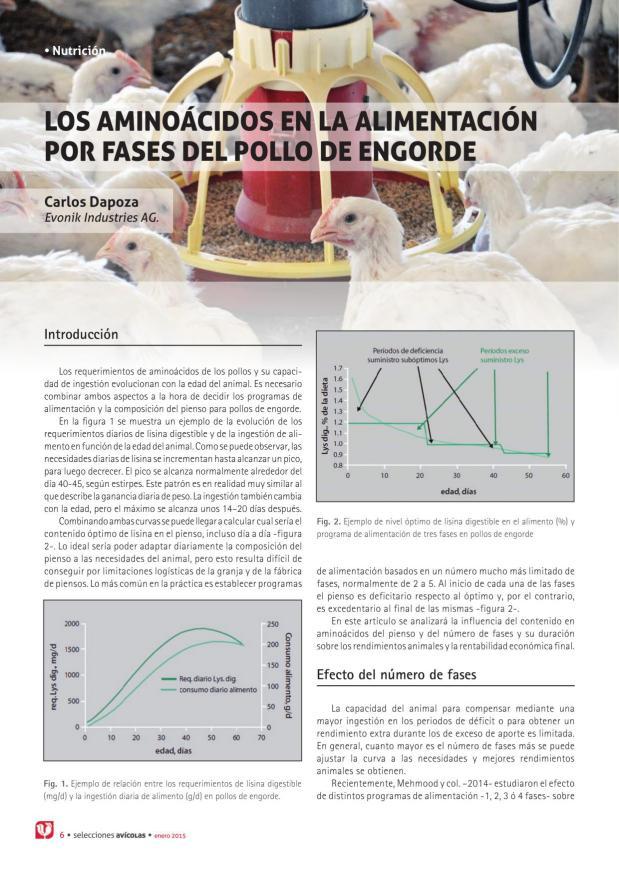 Los aminoácidos en la alimentación por fases del pollo de engorde