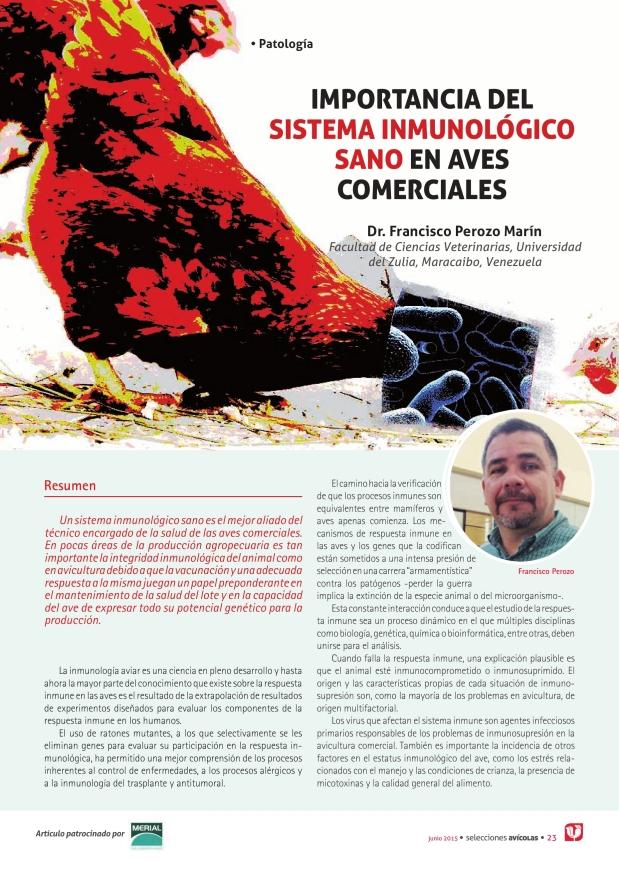 Importancia del sistema inmunológico sano en aves comerciales