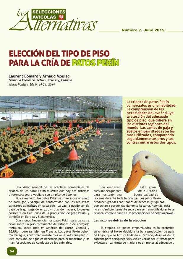Elección del tipo de piso para la cría de patos Pekín