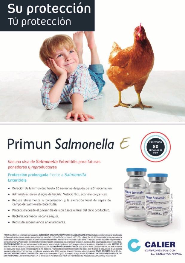 Calier Primum Salmonella