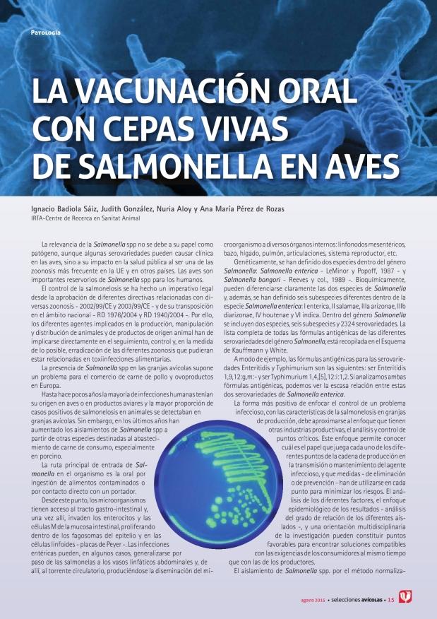 La vacunación oral con cepas vivas de salmonella en aves