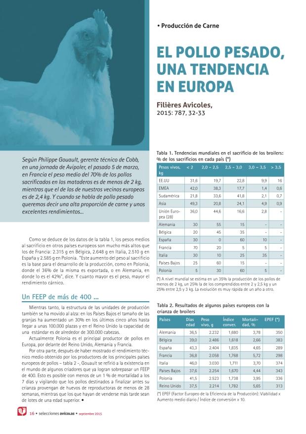 El pollo pesado, una tendencia en Europa