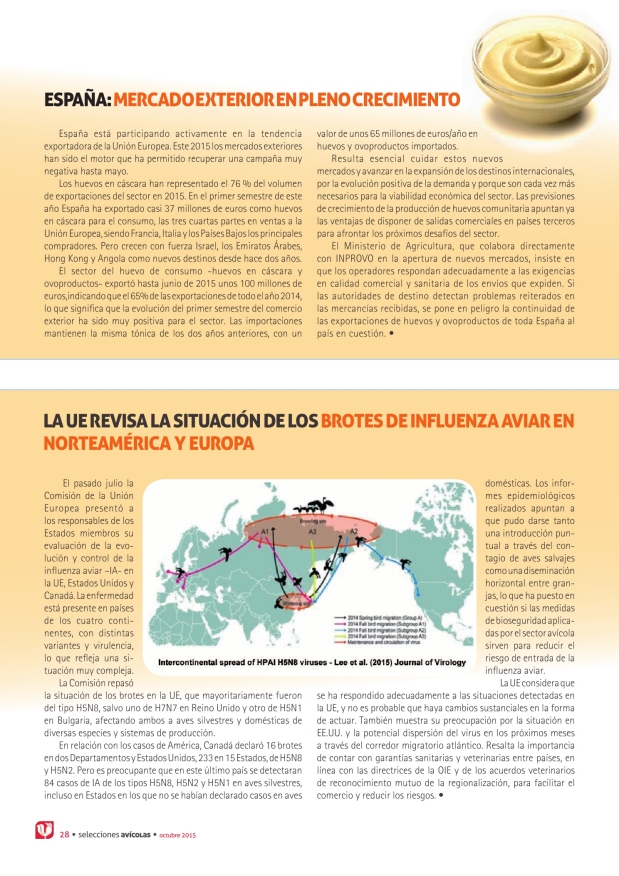 España: mercado exterior en pleno crecimiento