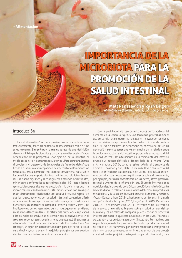 Importancia de la microbiota para la promoción de la salud intestinal