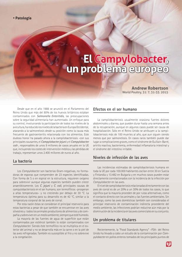 El Campylobacter, un problema europeo