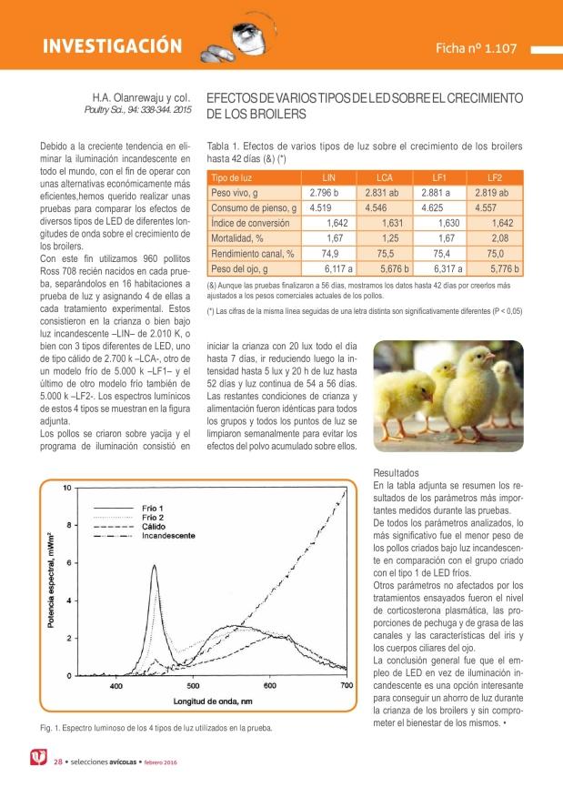 Efectos de varios tipos de led sobre el crecimiento de los broilers