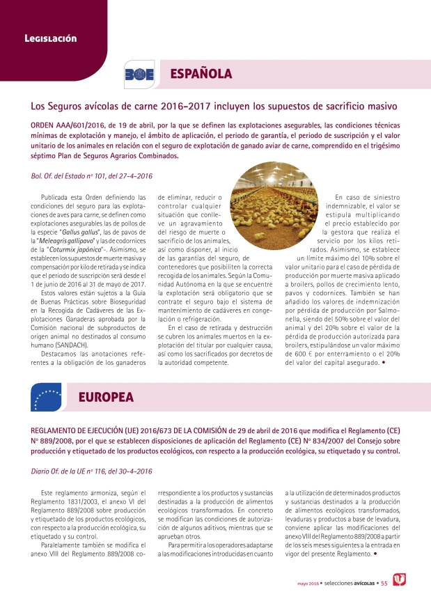 Los Seguros avícolas de carne 2016-2017 incluyen los supuestos de sacrificio masivo