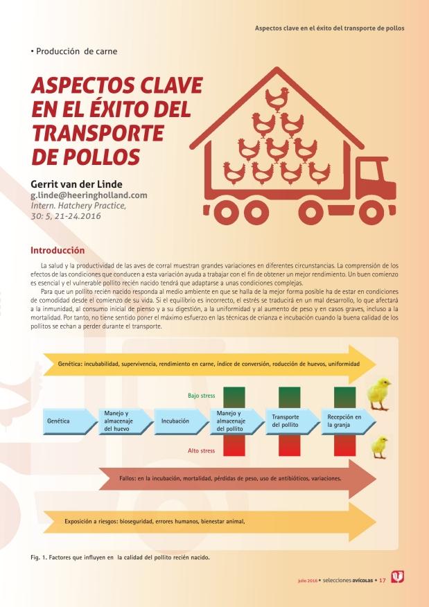 Aspectos clave en el éxito del transporte de pollos