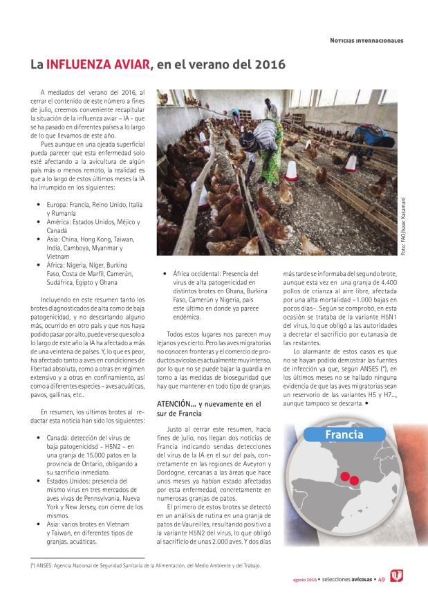 La influenza aviar, en el verano del 2016