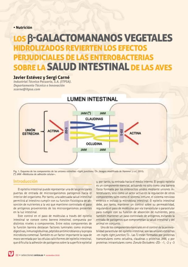 Los β-galactomananos vegetales hidrolizados revierten los efectos perjudiciales de las enterobacterias  sobre la salud intestinal de las aves