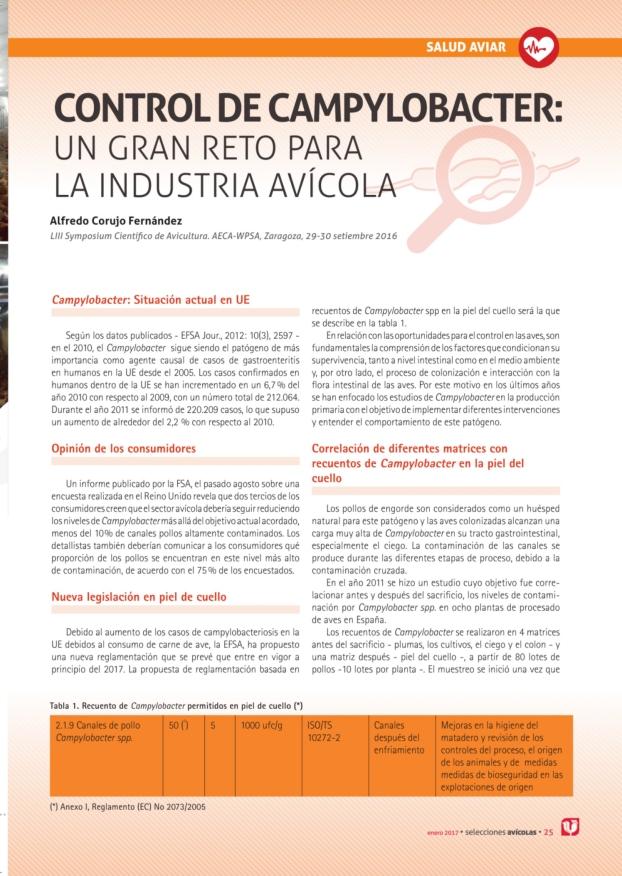 CONTROL de CAMPYLOBACTER: Un gran reto para la industria avícola