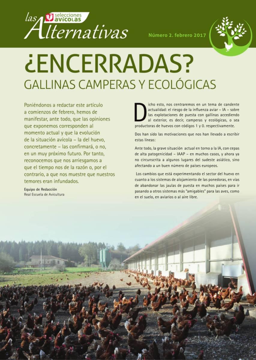 ¿ENCERRADAS? gallinas camperas y ecológicas