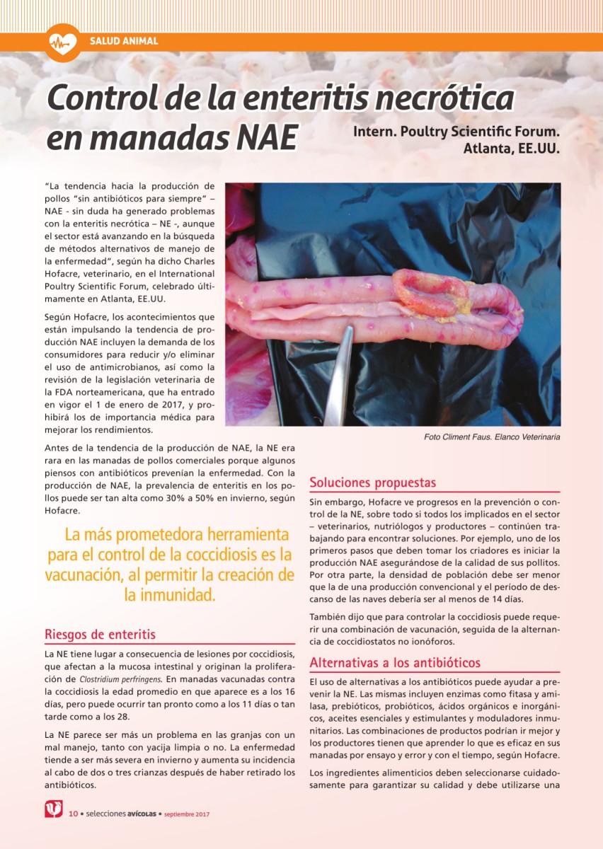 Control de la enteritis necrótica  en manadas NAE