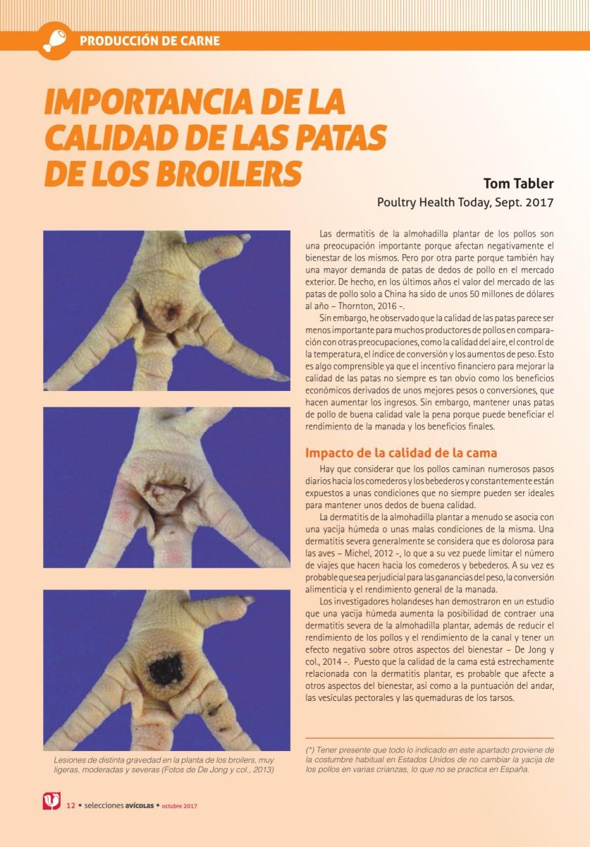 IMPORTANCIA DE LA CALIDAD DE LAS PATAS DE LOS BROILERS