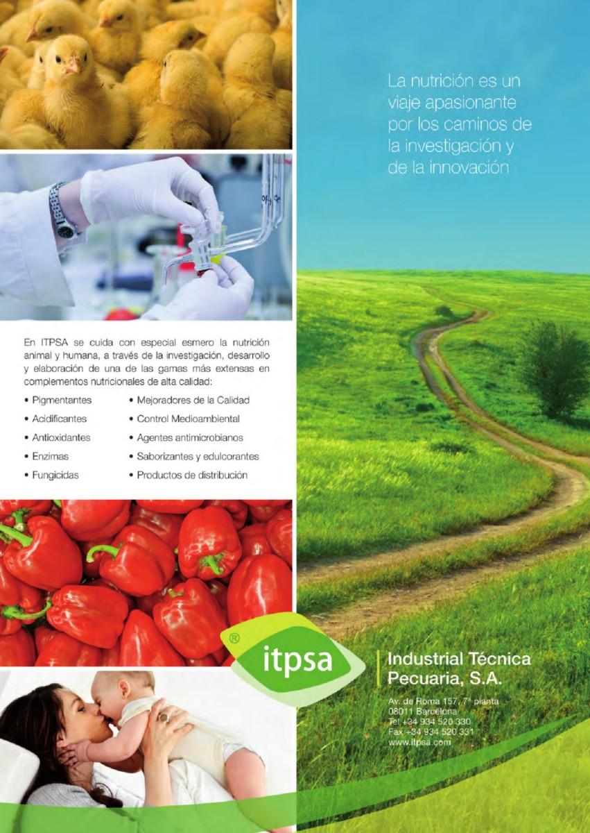 Publicidad Itpsa
