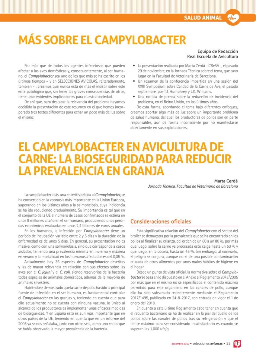 Más sobre el Campylobacter