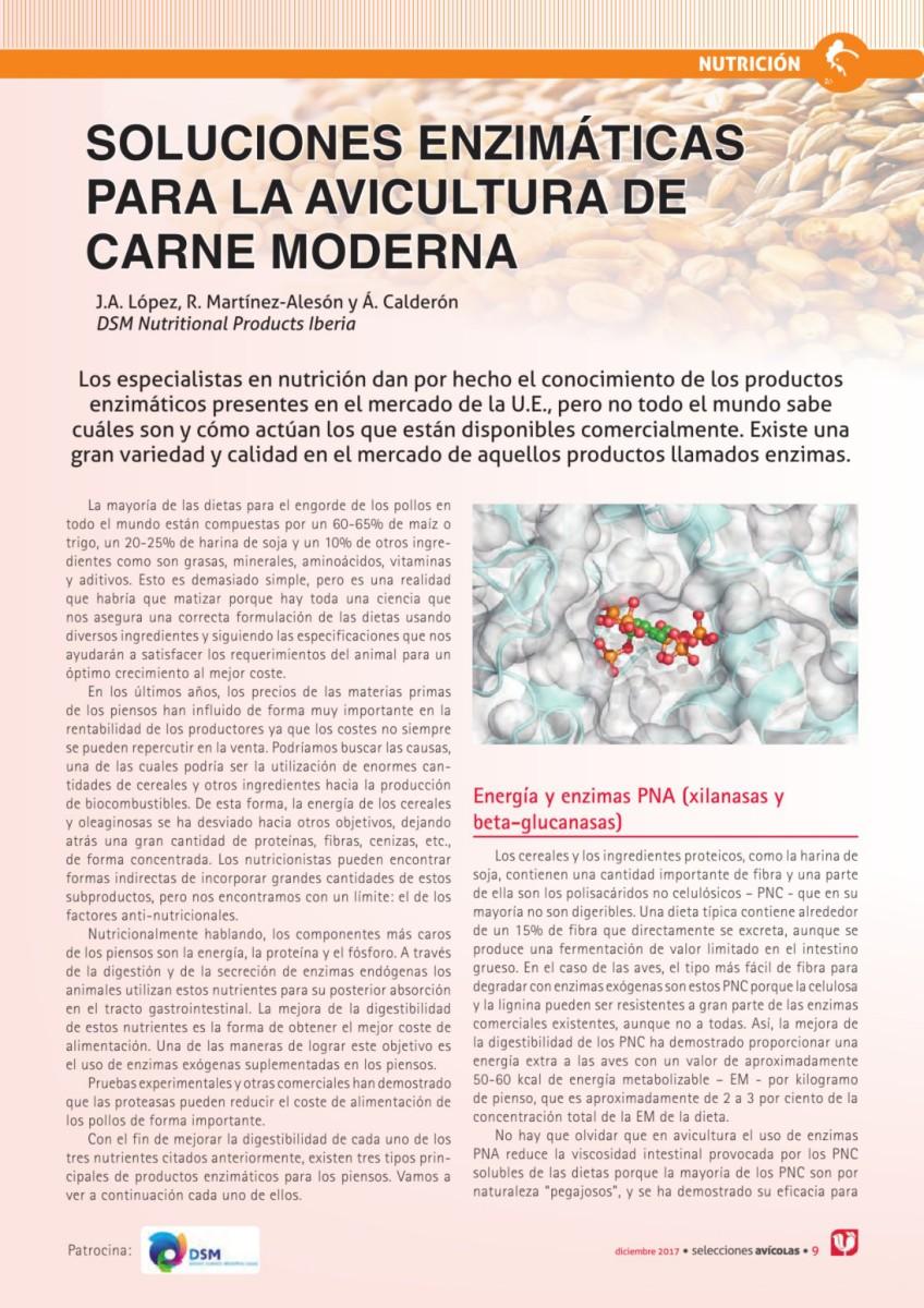 Soluciones enzimáticas para la avicultura de carne moderna
