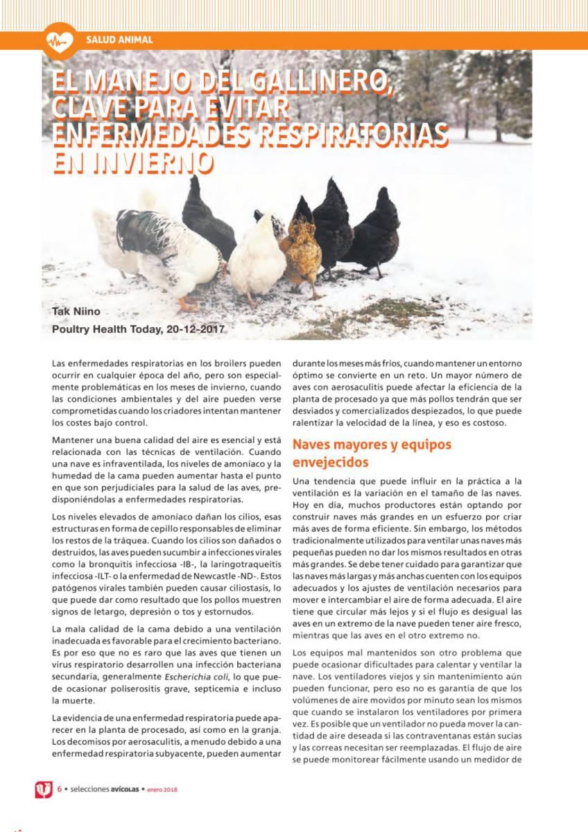 El manejo del gallinero clave para evitar enfermedades respiratorias en invierno