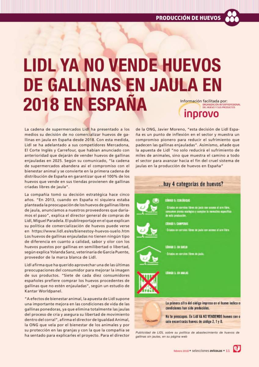 LIDL YA NO VENDE HUEVOS DE GALLINAS EN JAULA EN 2018 EN ESPAÑA