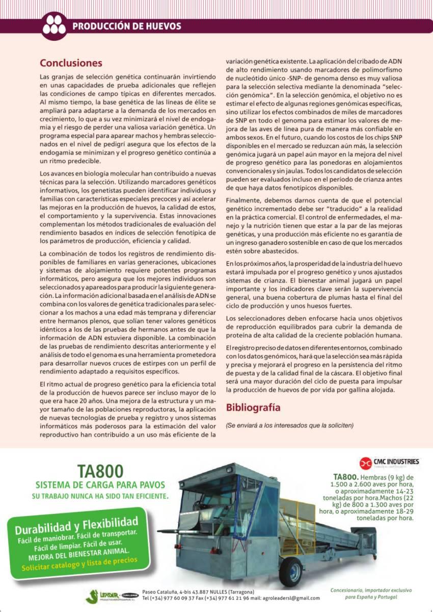Publicidad Leader