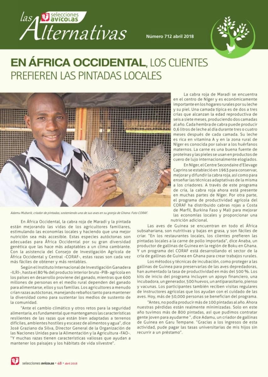 En África occidental, los clientes  prefieren las pintadas locales