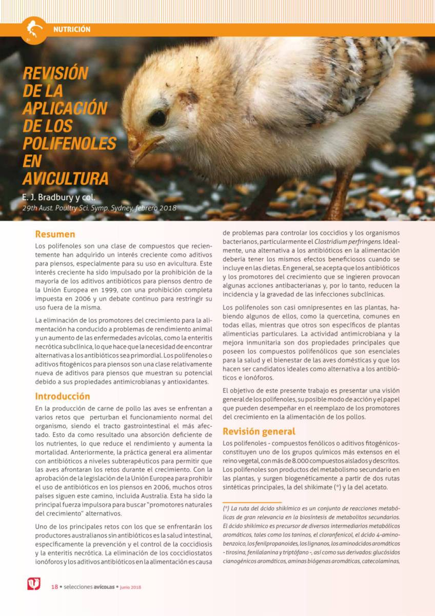 REVISIÓN DE LA APLICACIÓN DE LOS POLIFENOLES EN AVICULTURA