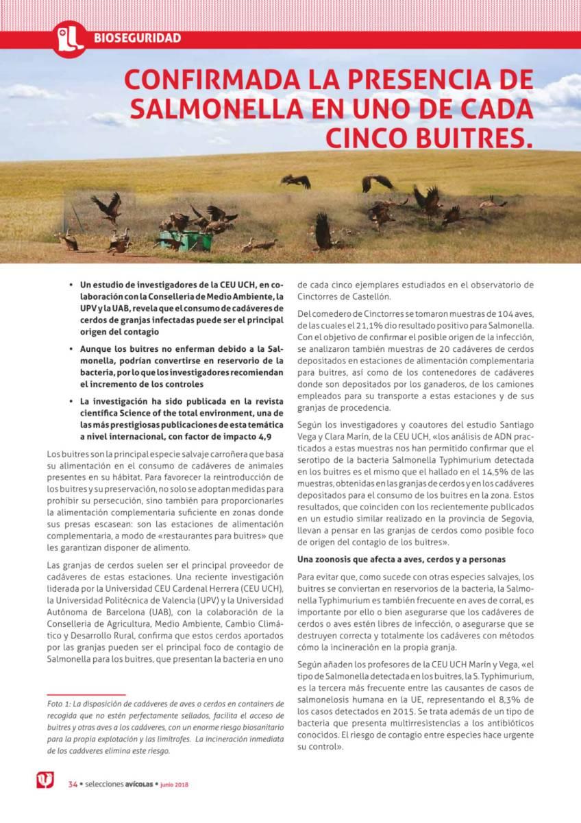 CONFIRMADA LA PRESENCIA DE SALMONELLA EN UNO DE CADA CINCO BUITRES.