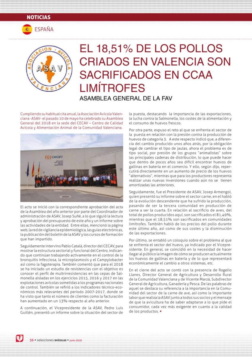 EL 18,51% DE LOS POLLOS CRIADOS EN VALENCIA SON SACRIFICADOS EN CCAA LIMÍTROFES