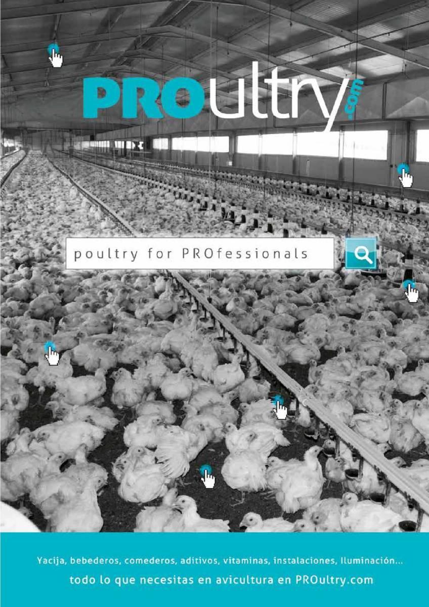 Publicidad Poultry.com