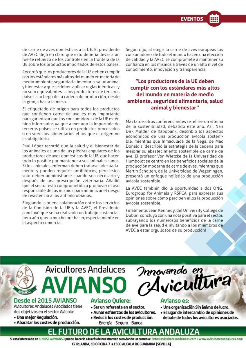 Publicidad Avianso