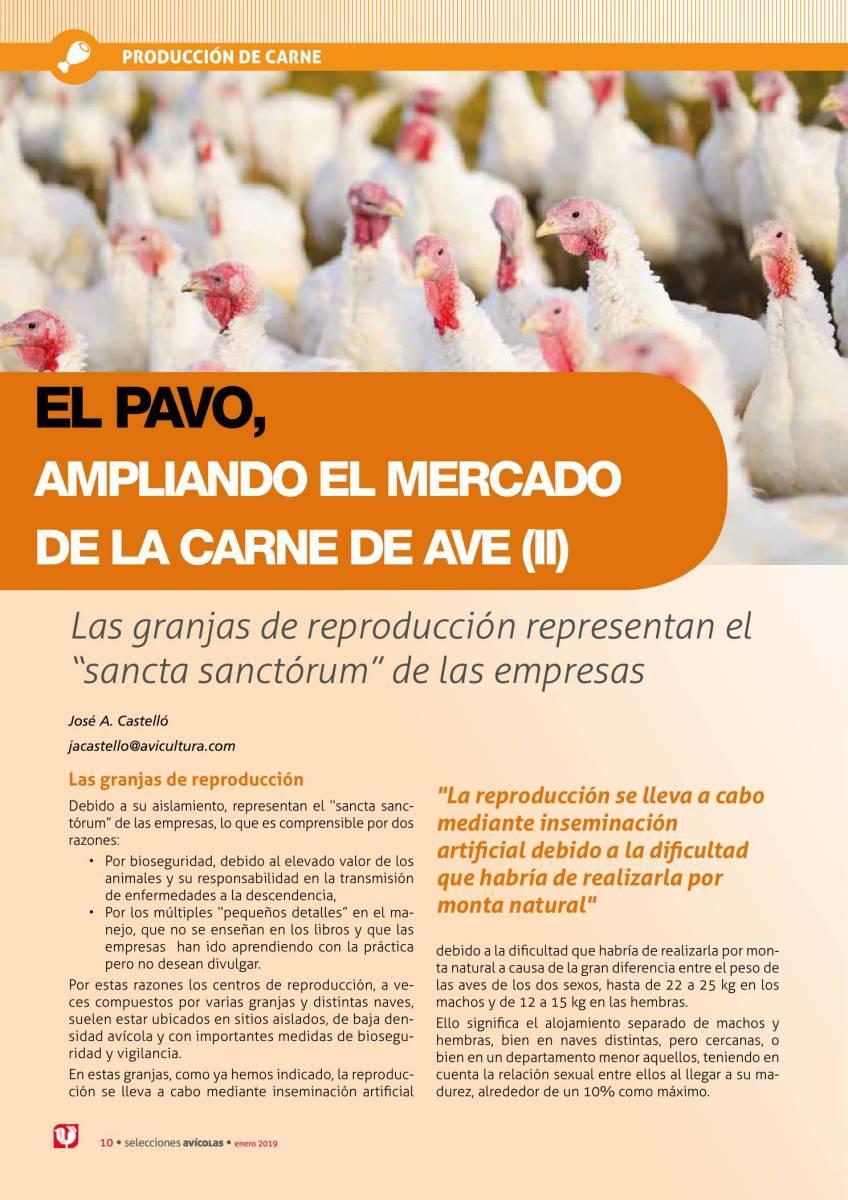 EL PAVO, AMPLIANDO EL MERCADO DE LA CARNE DE AVE (II)