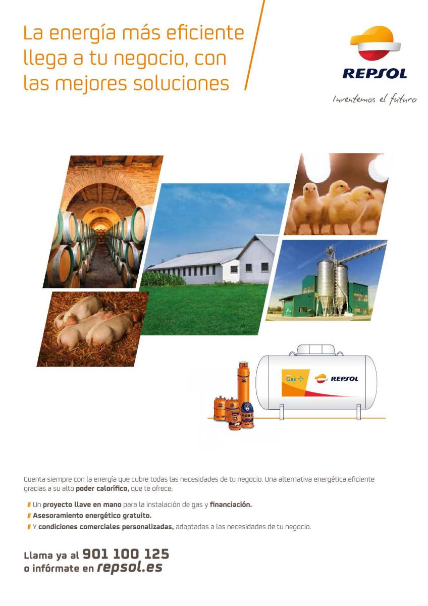 Publicidad Repsol