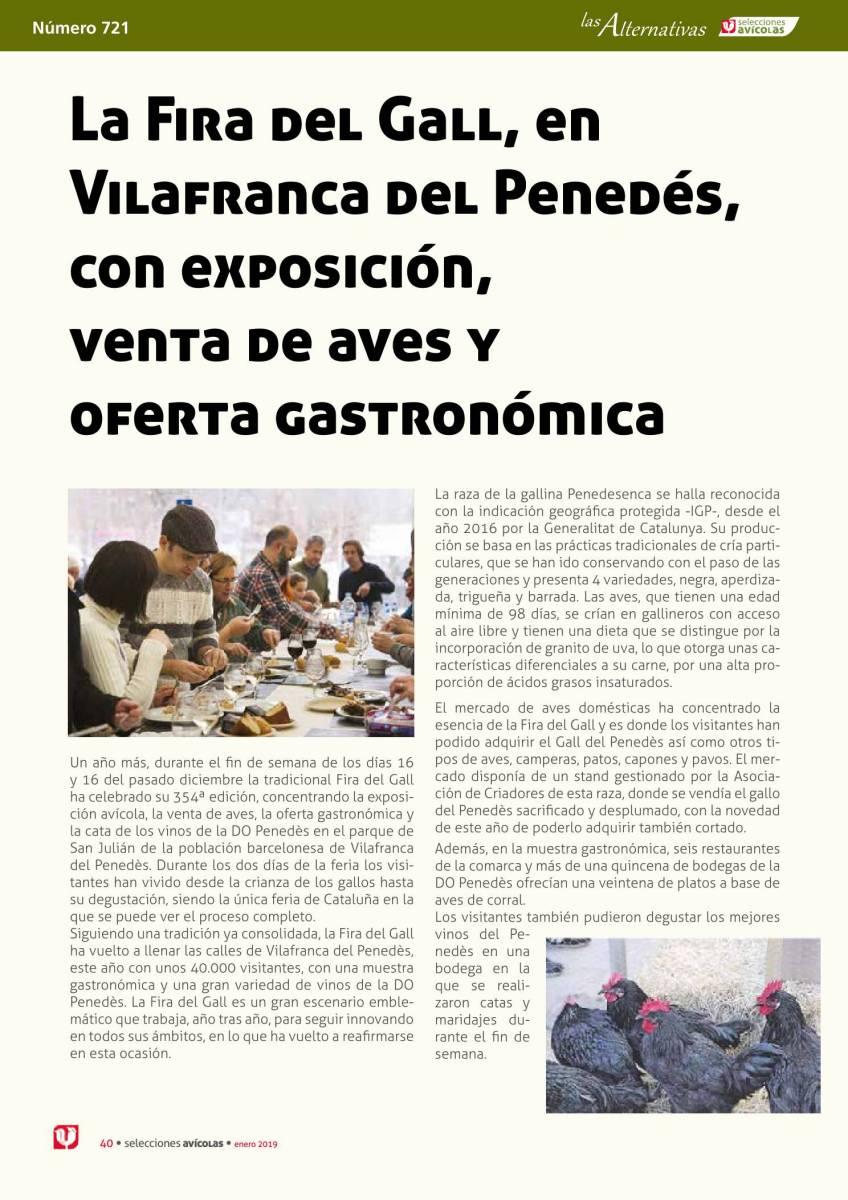 La Fira del Gall, en Vilafranca del Penedés, con exposición, venta de aves y oferta gastronómica