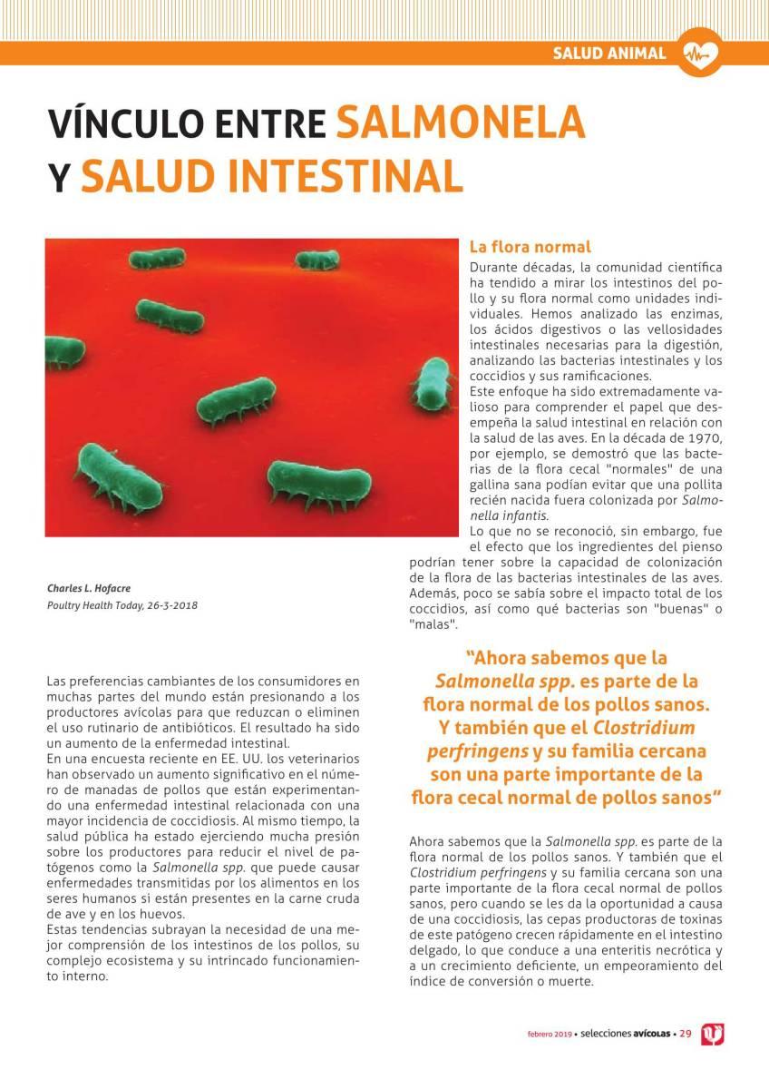VÍNCULO ENTRE SALMONELA Y SALUD INTESTINAL