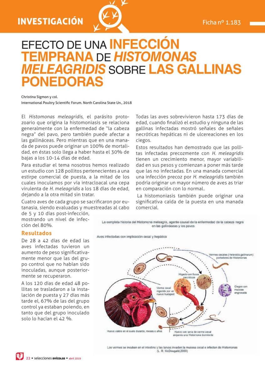 EFECTO DE UNA INFECCIÓN TEMPRANA DE HISTOMONAS MELEAGRIDIS SOBRE LAS GALLINAS PONEDORAS
