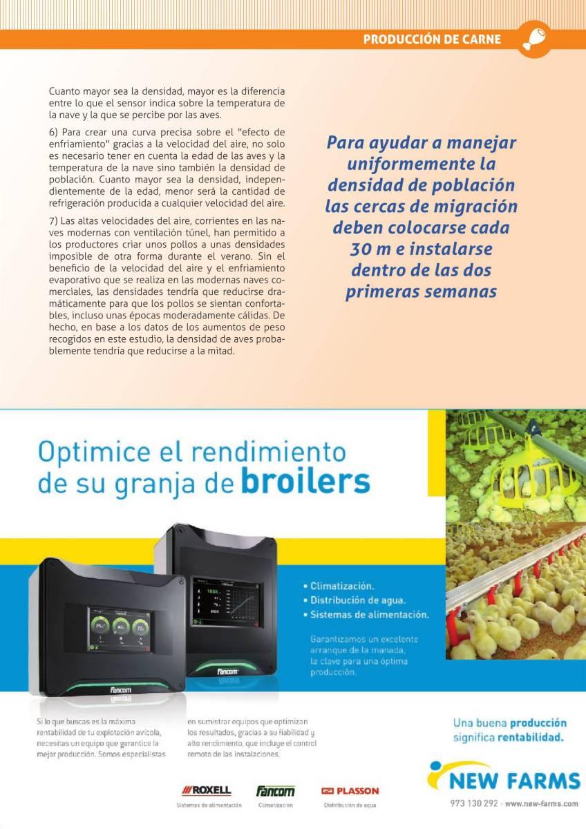 Publicidad New Farms broilers