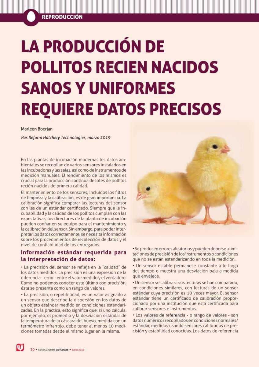La producción de pollitos recién nacidos sanos y uniformes requiere datos precisos