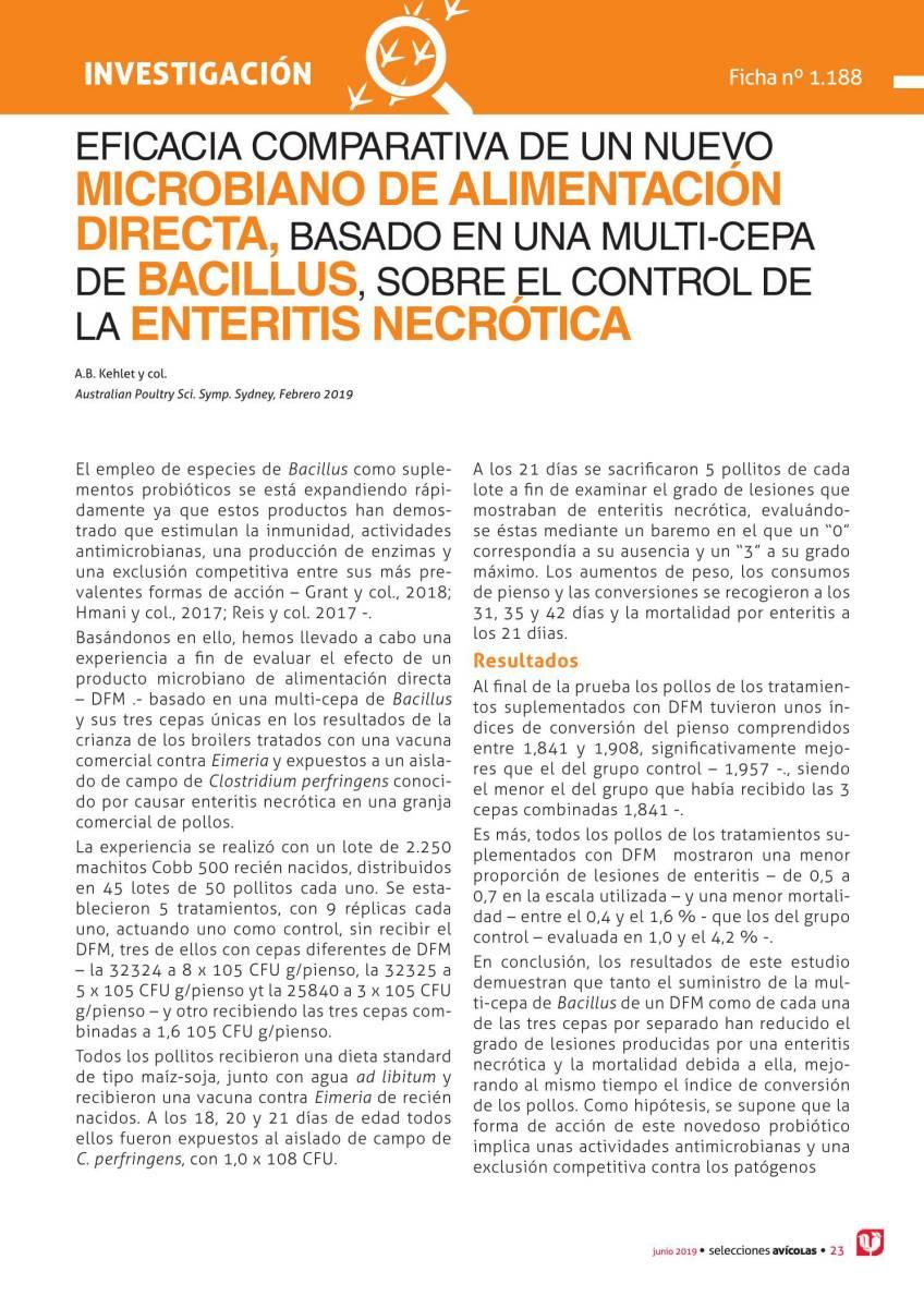 Eficacia comparativa de un nuevo microbiano de alimentación directa, basado en una multi-cepa de BACILLUS, sobre el control de la enteritis necrótica.