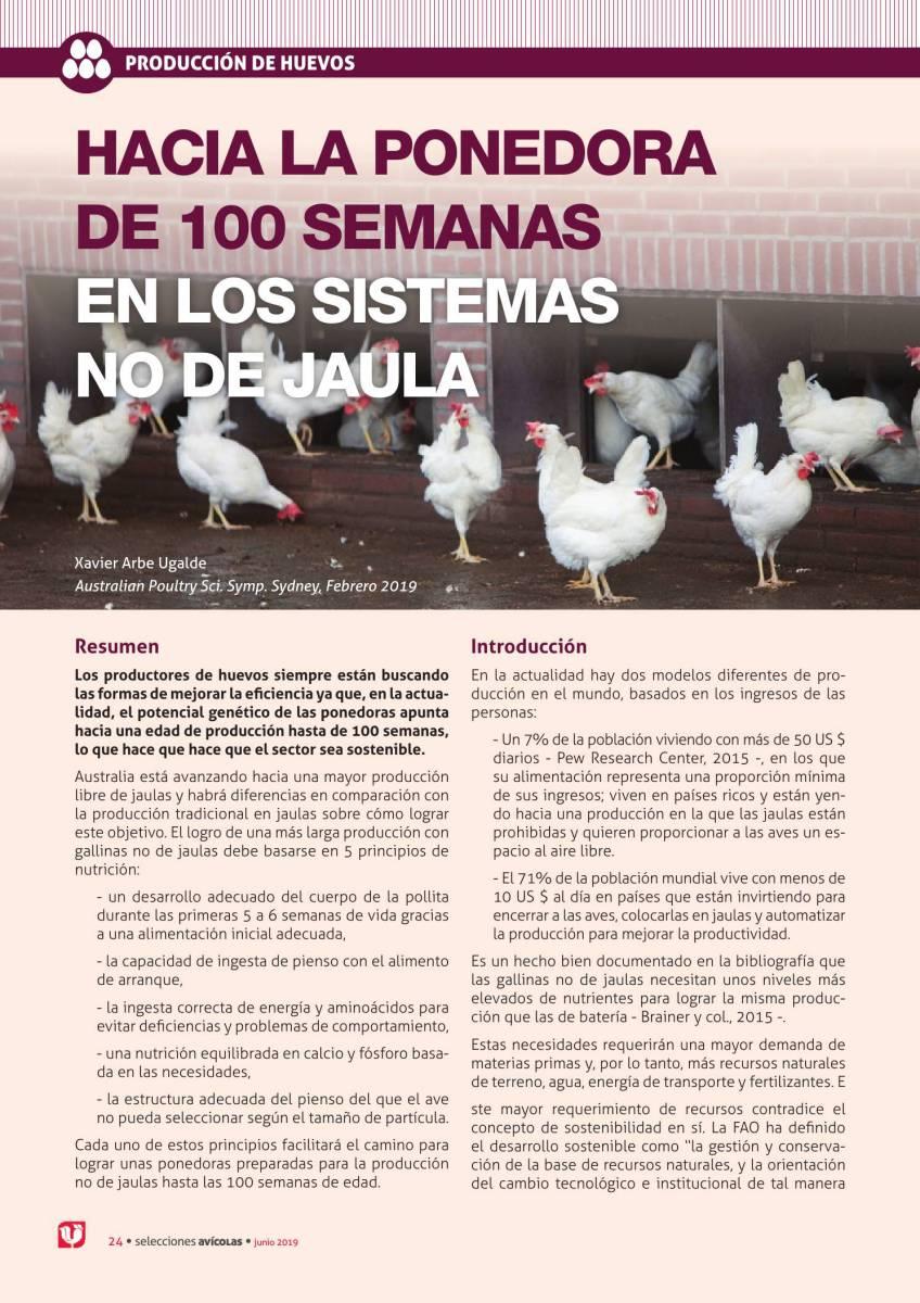 Hacia la gallina ponedora de 100 semanas en los sistemas no de jaulas